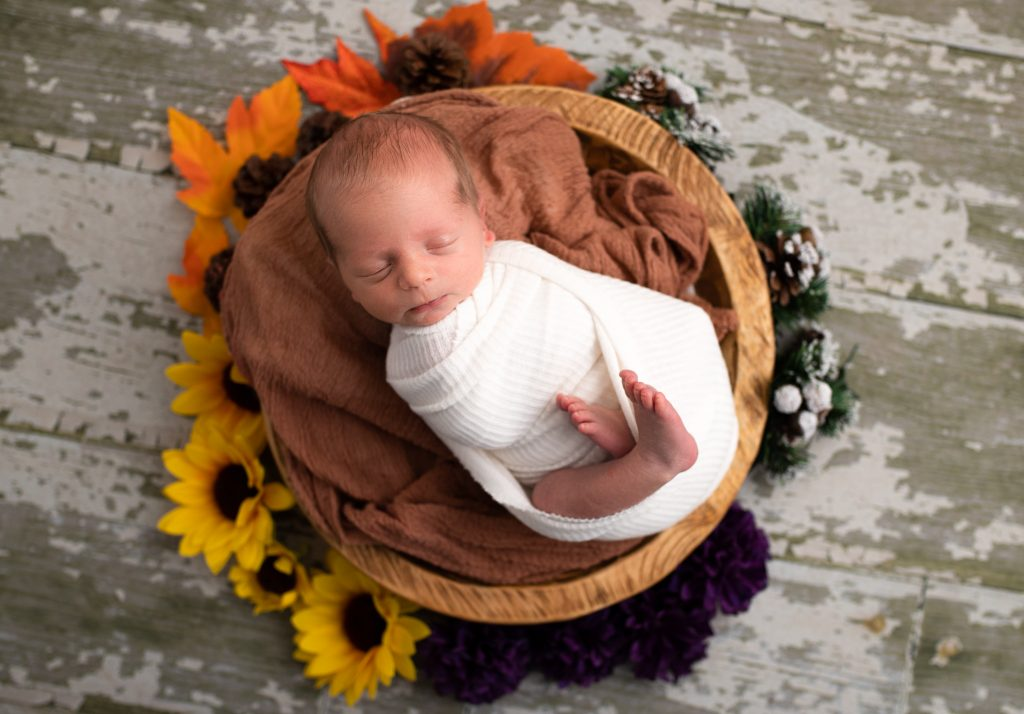 Newborn Photography Carmel Indiana