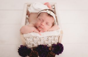 Posed Newborn Photographer Carmel Indiana