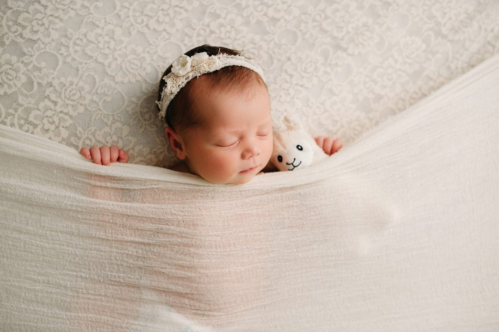 Carmel Indiana Affordable Newborn and Family Photos